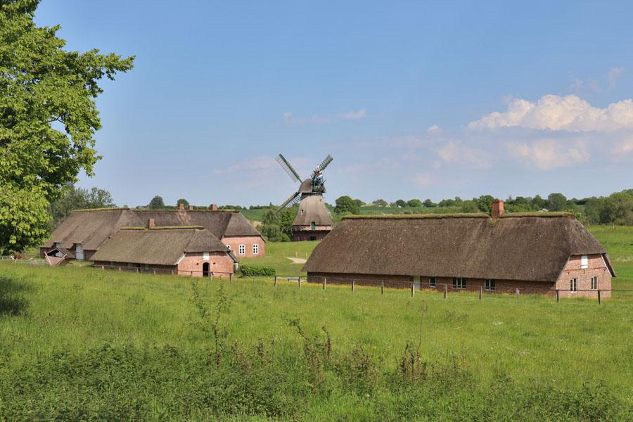 Freilichtmuseum Molfsee - Häuser aus Nordfriesland und Windmühle aus Hollingstedt
